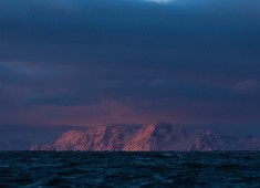 The very first sun after a long winter with orca safari above the arctic circle. Photo: Stefan Linnerhag